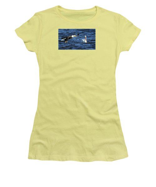 Women's T-Shirt (Junior Cut) featuring the photograph Eagle And Pelican by Coby Cooper