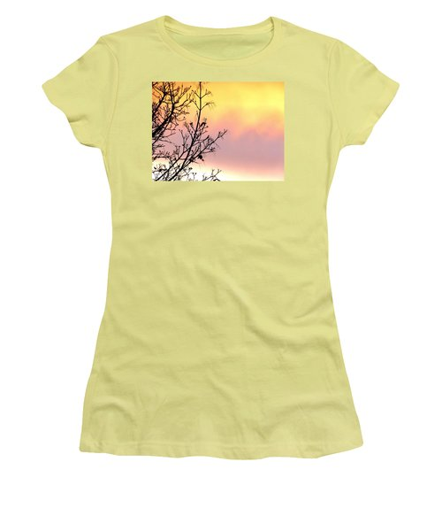 Women's T-Shirt (Junior Cut) featuring the photograph Early Spring Sunset by Will Borden