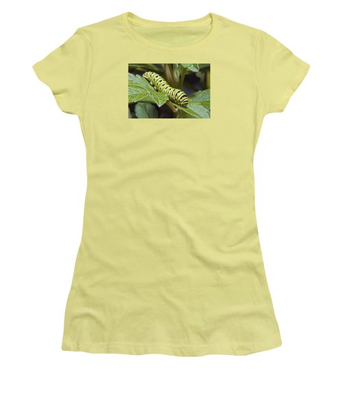 Eastern Black Swallowtail Caterpillar IIi Women's T-Shirt (Junior Cut) by Michael Peychich