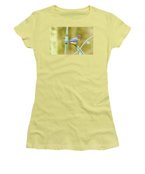 Eastern Bluebird Women's T-Shirt (Athletic Fit)