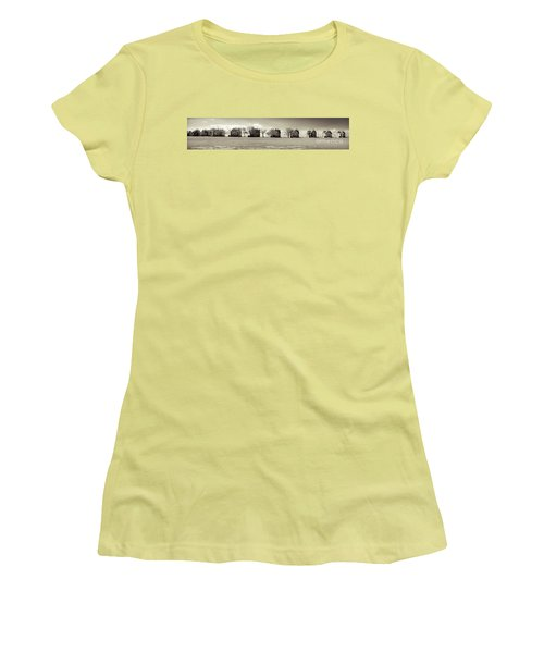 Women's T-Shirt (Junior Cut) featuring the photograph Eleven In A Row - Officer's Row - Monotone by Colleen Kammerer