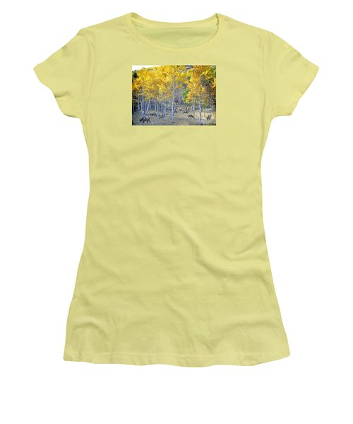 Elk In Rmnp Colorado Women's T-Shirt (Junior Cut) by Nava Thompson