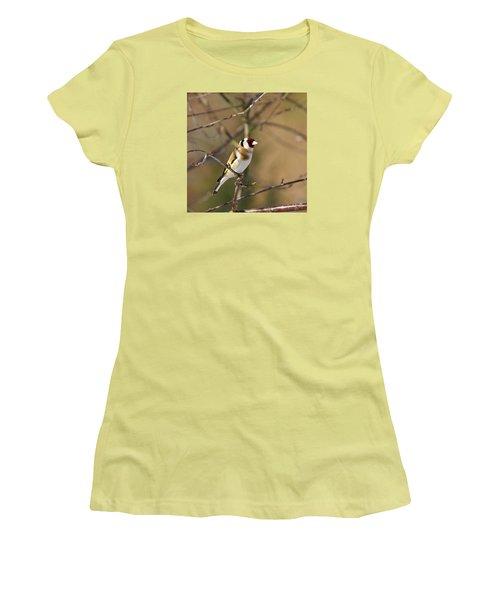 European Goldfinch 2 Women's T-Shirt (Junior Cut) by Jouko Lehto