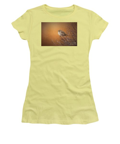 Evening Sparrow Song Women's T-Shirt (Athletic Fit)