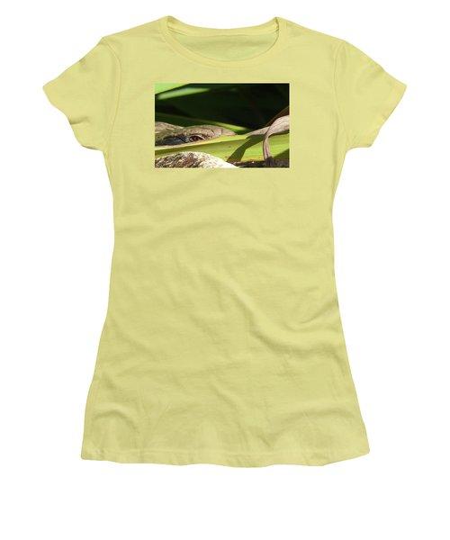 Eye Contact Women's T-Shirt (Junior Cut) by Evelyn Tambour
