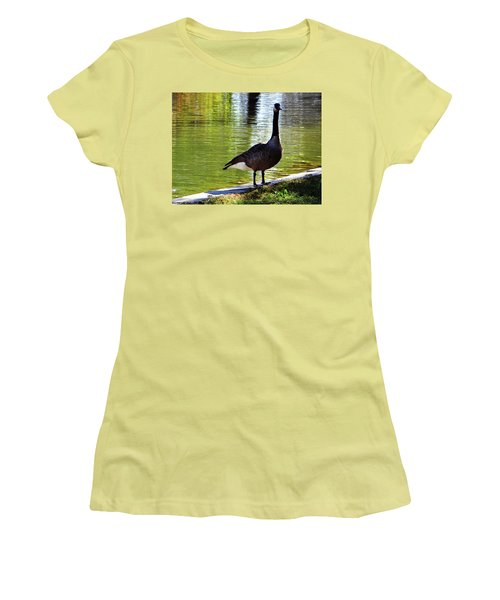 Fall Goose Women's T-Shirt (Athletic Fit)