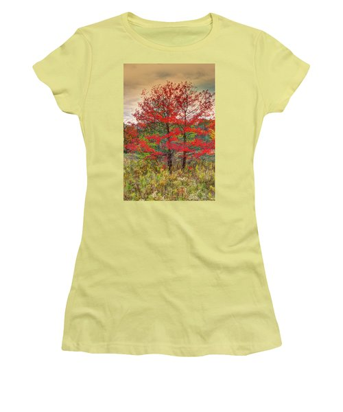 Fall Painting Women's T-Shirt (Junior Cut) by Skip Tribby