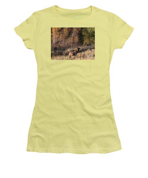 Fall Sunset Satellite Bull Elk II Women's T-Shirt (Athletic Fit)