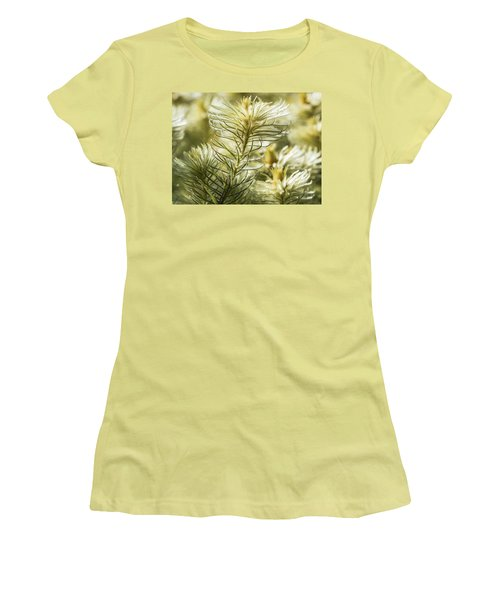 Featherheads Women's T-Shirt (Athletic Fit)