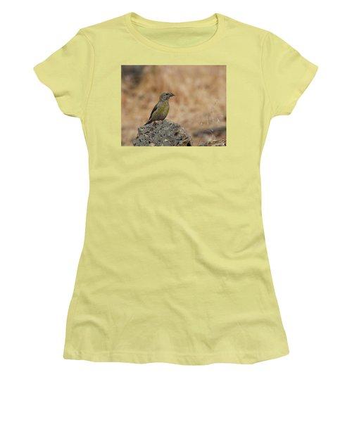Female Red Crossbill Women's T-Shirt (Junior Cut) by Doug Lloyd