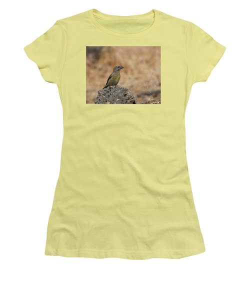 Female Red Crossbill Women's T-Shirt (Athletic Fit)