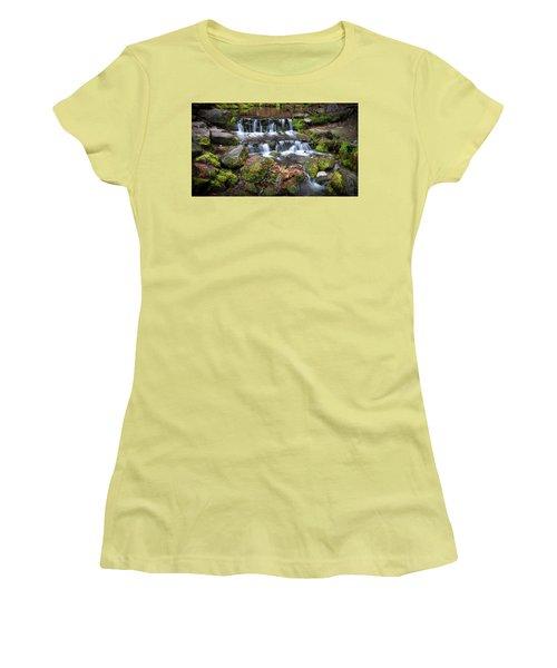 Fern Springs Women's T-Shirt (Junior Cut) by Ralph Vazquez
