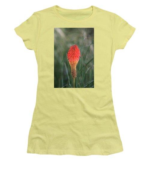 Firecracker Women's T-Shirt (Junior Cut)