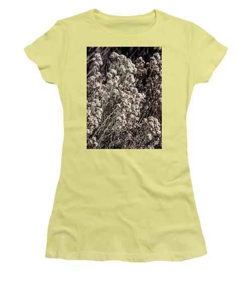Fluff And Seeds Women's T-Shirt (Junior Cut) by John Brink