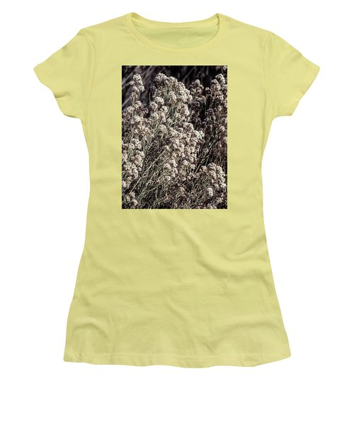 Fluff And Seeds Women's T-Shirt (Athletic Fit)