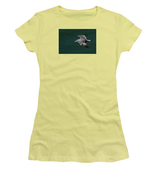Flyby Women's T-Shirt (Junior Cut) by Richard Patmore