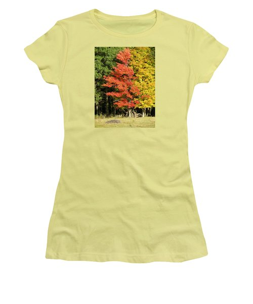 Forest Door Women's T-Shirt (Athletic Fit)