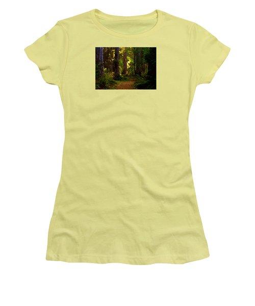 Forest Path Women's T-Shirt (Junior Cut) by Lori Seaman