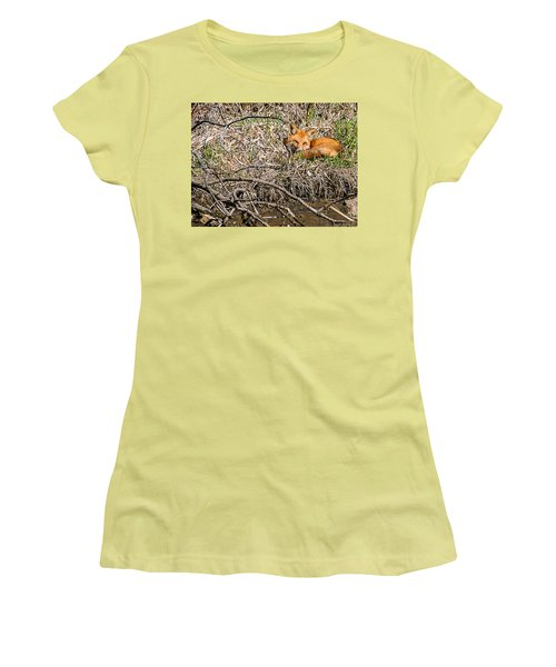 Women's T-Shirt (Junior Cut) featuring the photograph Fox Napping by Edward Peterson