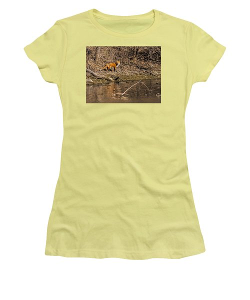 Women's T-Shirt (Junior Cut) featuring the photograph Fox Walk by Edward Peterson