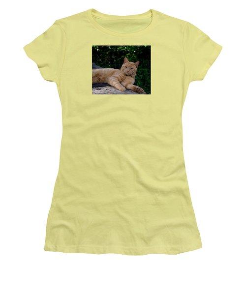 Women's T-Shirt (Junior Cut) featuring the photograph Franklin by Karen Harrison