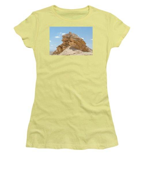 Frog Rock Women's T-Shirt (Junior Cut) by Arik Baltinester