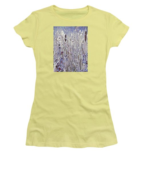 Frosted Cattails In The Morning Light Women's T-Shirt (Junior Cut) by Joy Nichols