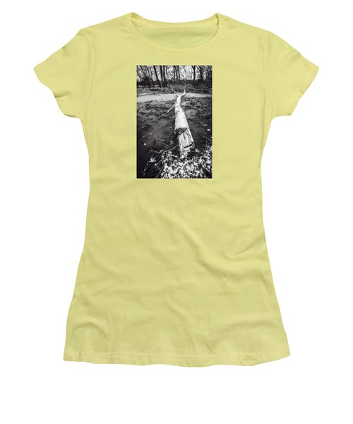 Frozen Landscape Women's T-Shirt (Junior Cut) by Andy Crawford