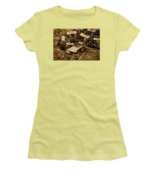 Gaboon Viper Resting 2 Women's T-Shirt (Athletic Fit)