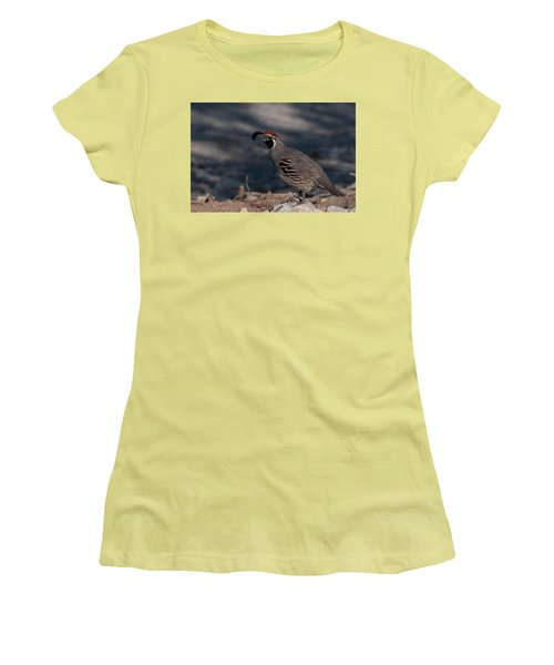 Gambel's Quail Women's T-Shirt (Junior Cut) by Martina Thompson