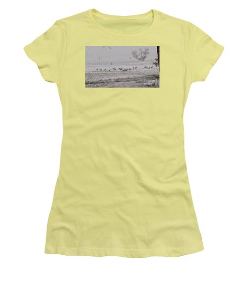 Geese Walking In The Snow Women's T-Shirt (Athletic Fit)