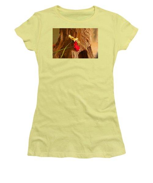 Gerber Daisy On Driftwod Women's T-Shirt (Junior Cut) by Ronald Olivier