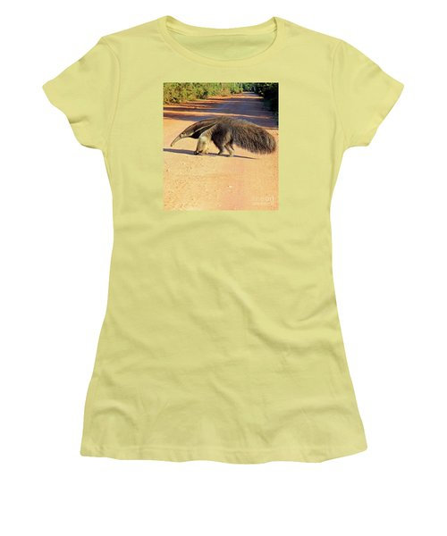 Giant Anteater Crosses The Transpantaneira Highway In Brazil Women's T-Shirt (Athletic Fit)