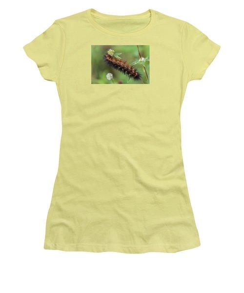 Giant Leopard Moth Caterpillar Women's T-Shirt (Athletic Fit)