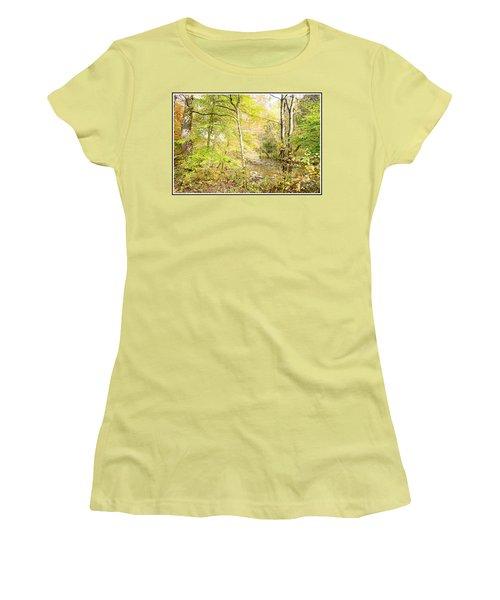 Glimpse Of A Stream In Autumn Women's T-Shirt (Junior Cut) by A Gurmankin