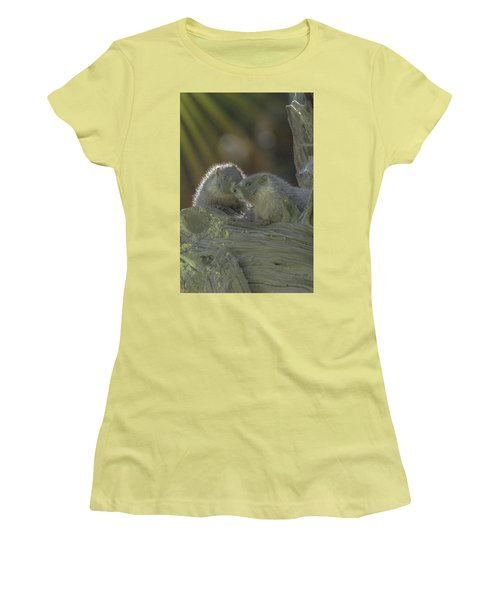 Golden Bellied Marmot Women's T-Shirt (Athletic Fit)