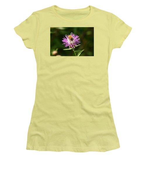 Golden Boy-bee At Work Women's T-Shirt (Junior Cut) by David Porteus