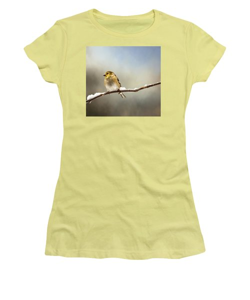 Goldfinch After A Spring Snow Storm Women's T-Shirt (Athletic Fit)