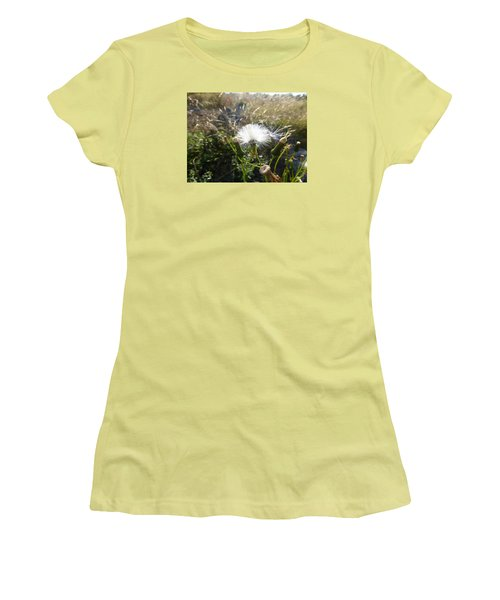 Women's T-Shirt (Junior Cut) featuring the photograph Grand Manan Dandelion  by Joel Deutsch