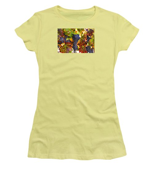 Grapes On Vine In Vineyards Women's T-Shirt (Junior Cut) by Garry Gay