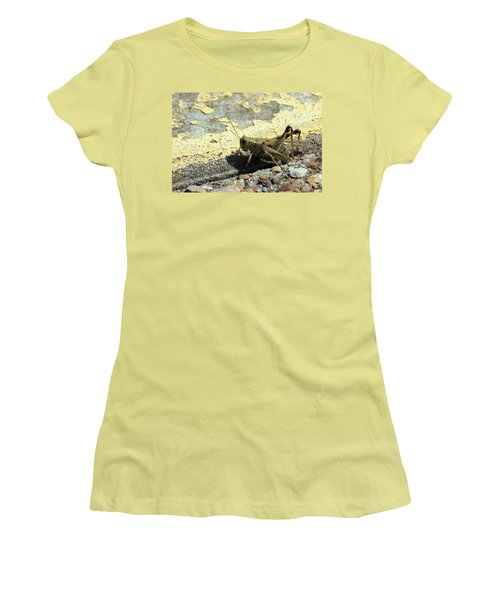 Grasshopper Laying Eggs Women's T-Shirt (Athletic Fit)