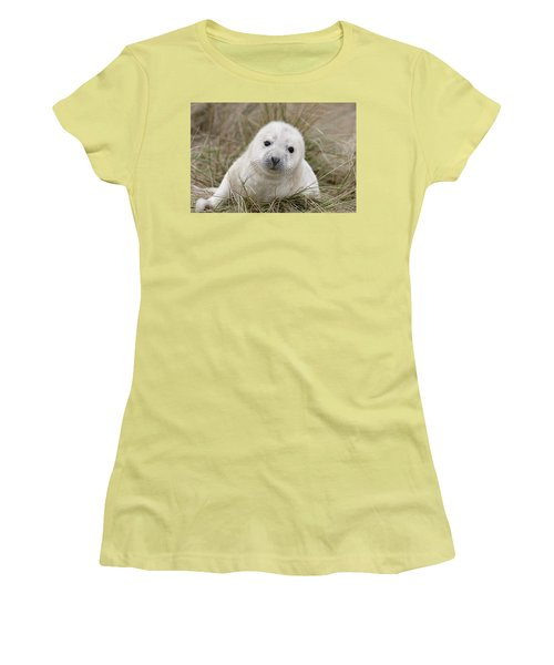 Grey Seal Pup Women's T-Shirt (Athletic Fit)