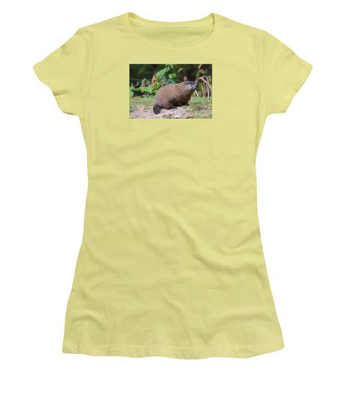 Groundhog  0590 Women's T-Shirt (Athletic Fit)