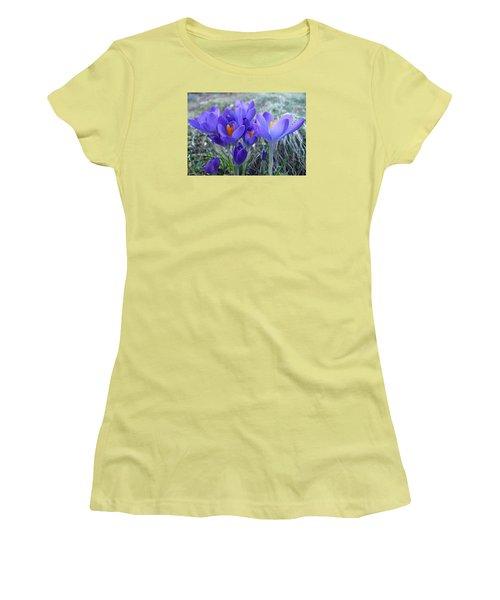 Harbinger Of Spring Women's T-Shirt (Junior Cut) by Barbara McDevitt