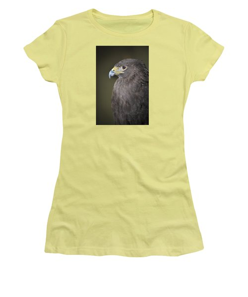 Harris Hawk Women's T-Shirt (Junior Cut) by Tyson and Kathy Smith