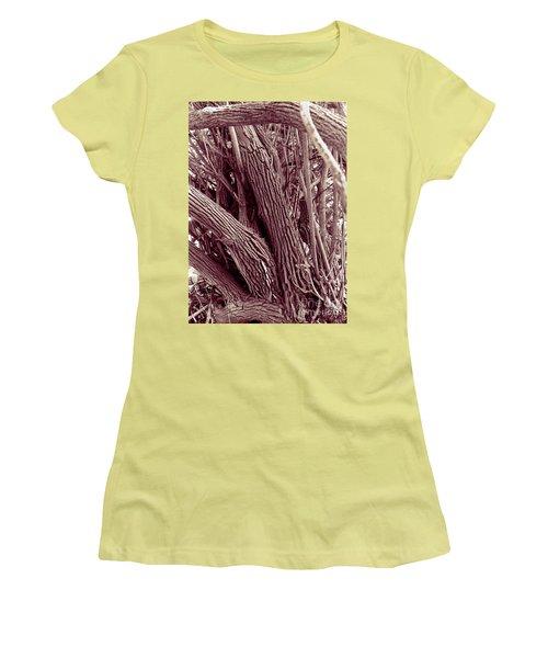 Women's T-Shirt (Junior Cut) featuring the photograph Hau Trees by Mukta Gupta