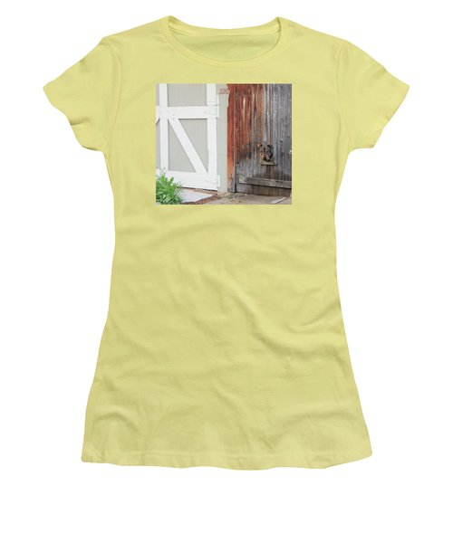 Women's T-Shirt (Junior Cut) featuring the photograph Hello, Comet by Christin Brodie