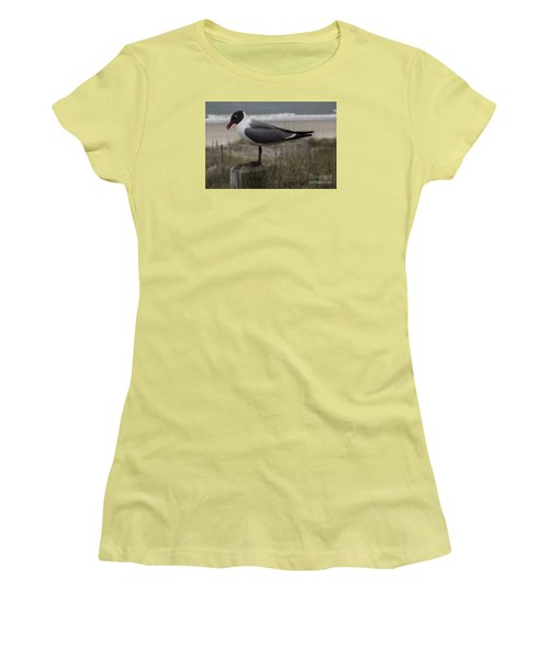 Hello Friend Seagull Women's T-Shirt (Athletic Fit)