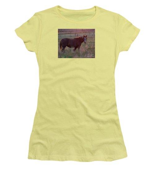 Horses 2 Women's T-Shirt (Athletic Fit)