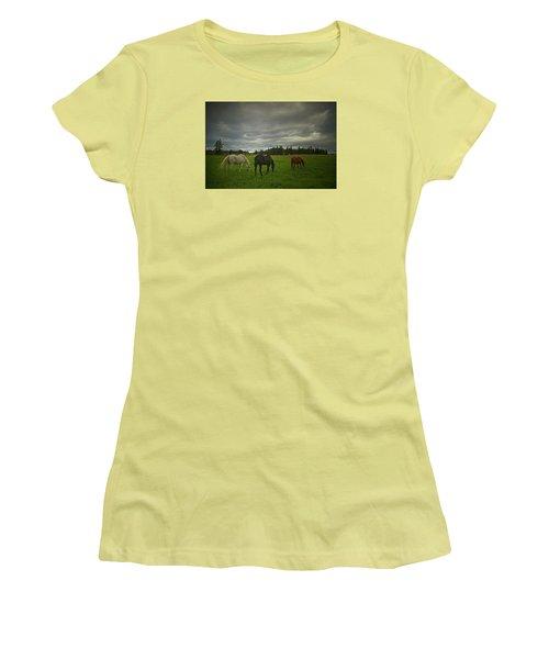 Horses Under Heavy Sky Women's T-Shirt (Athletic Fit)